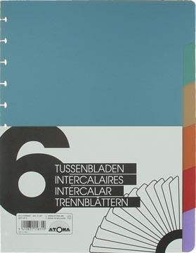 Atoma Toebehoren voor schriften set van 6 tabbladen uit PP in 6 kleuren