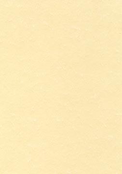 Decadry structuurpapier champagne, 165 g, pak van 50 vel